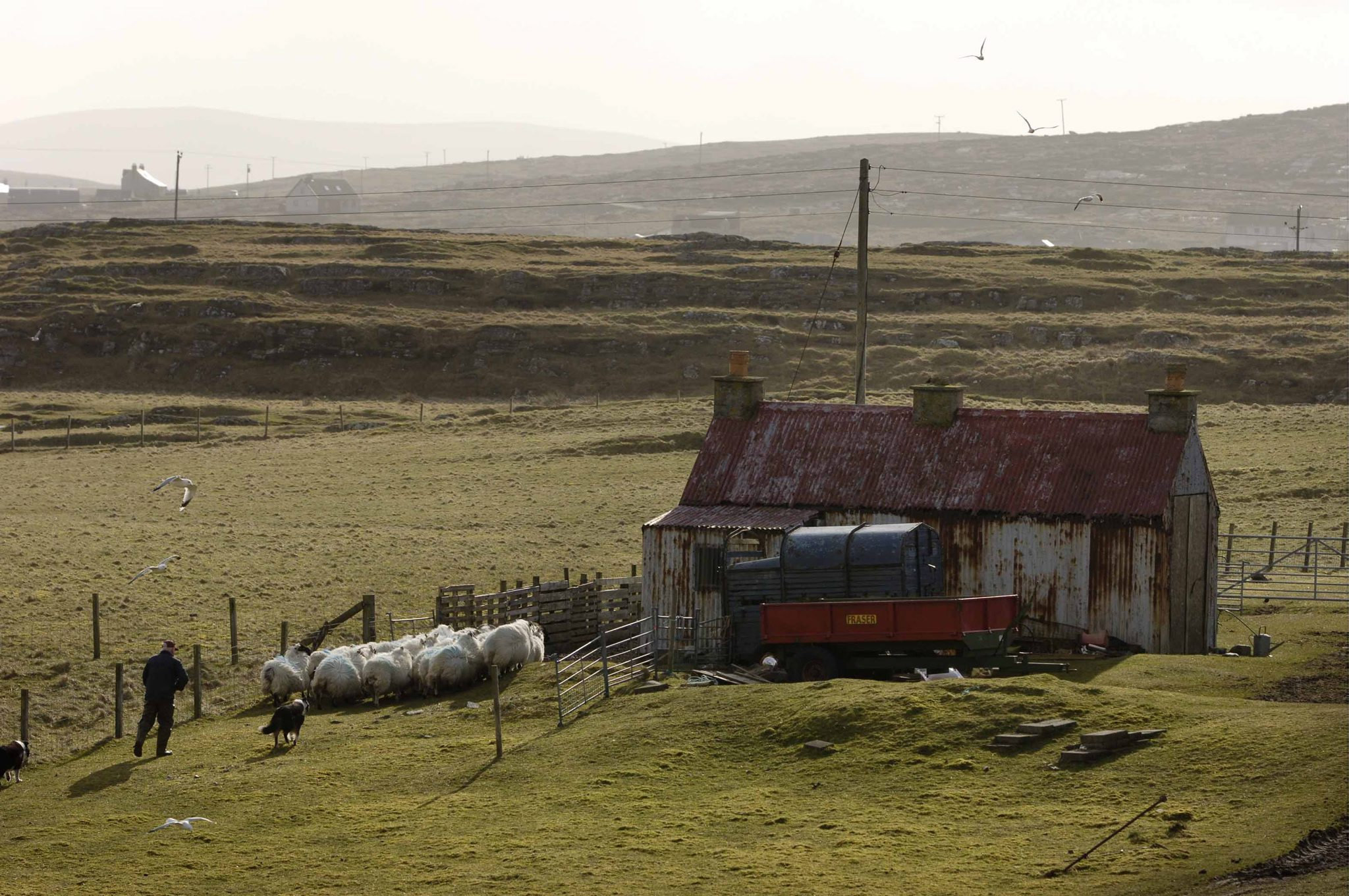 Plans to regenerate 'lost townships' decimated by the Highland Clearances