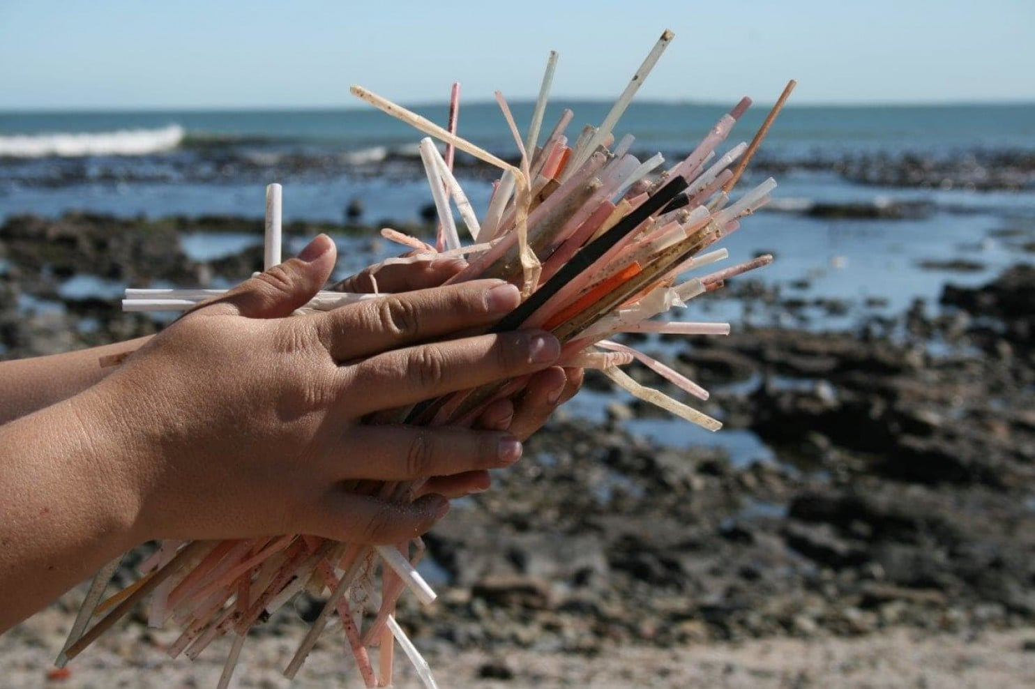 Supermarkets urged to stop stocking plastic straws