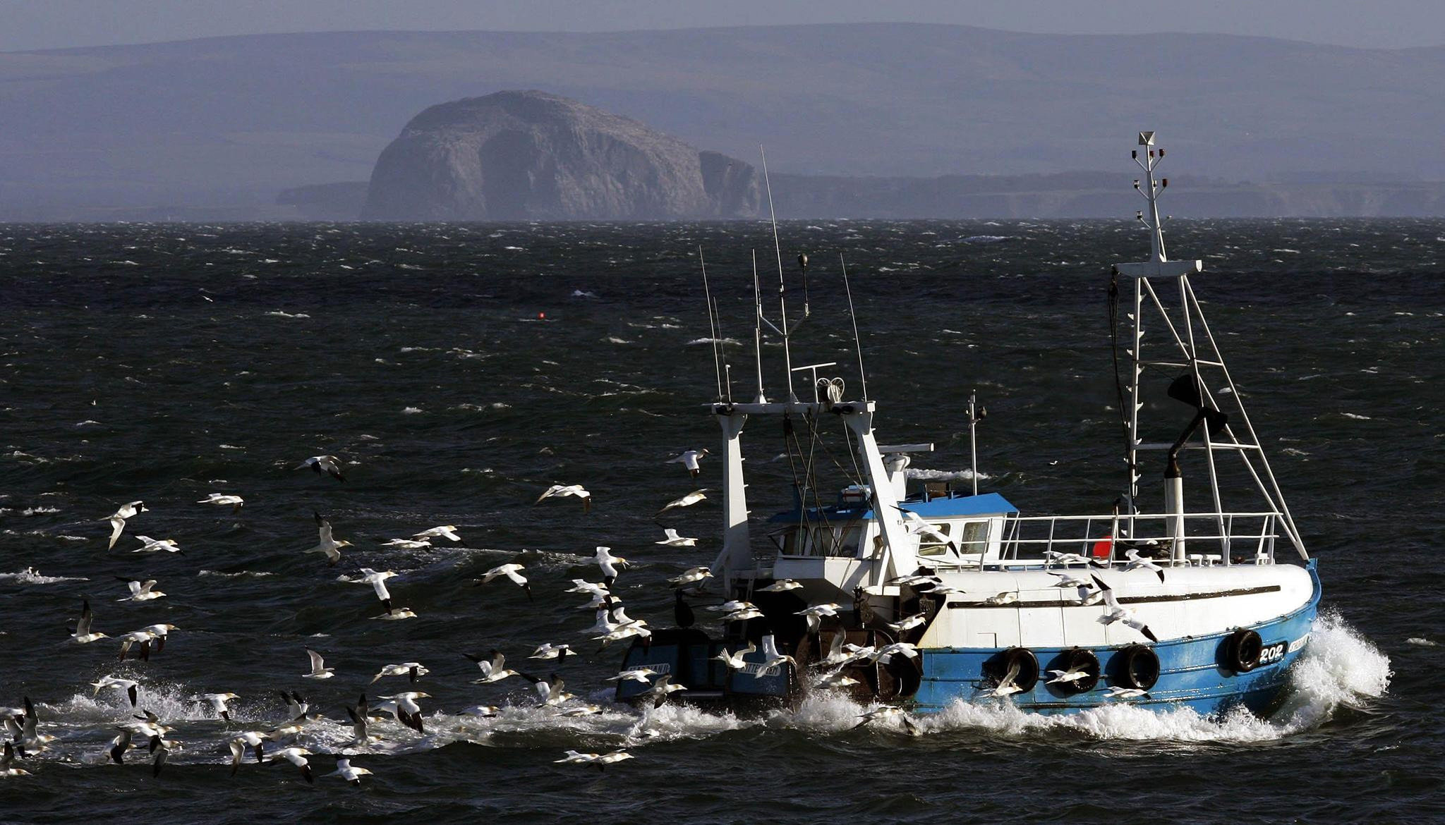 Calls have been made for more quotas to go to small-scale, local fishermen. Picture: PA.